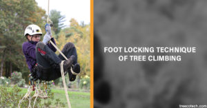 Foot Locking is the methodology used for climbing