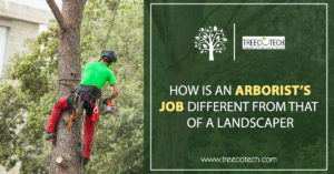 How is an Arborist's Job Different from that of a Landscaper