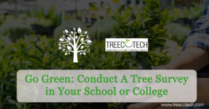 Go Green Conduct A Tree Survey in Your School or College