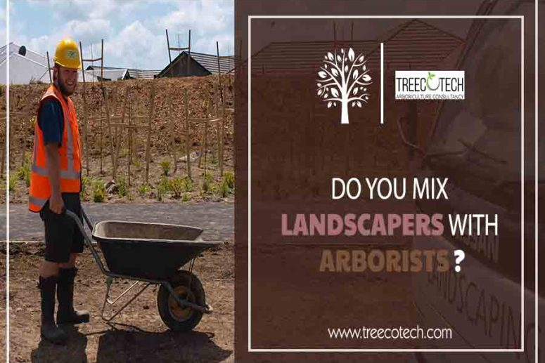 Landscapers with Arborists