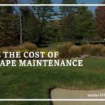 How to Reduce the Cost of Landscape Maintenance?