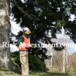 Our Tree Risk Assessments servies are part of a tree management plan for residential, business or academic properties. Treeco tech is India's best Tree Risk Assessment Company in India.